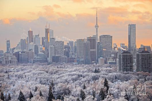 toronto-winter-sunset-charline-xia[1]
