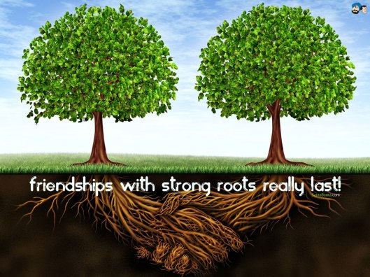 friendship-56v1