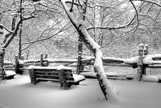 20091131-snow-bench