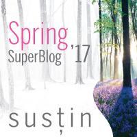 superblog2