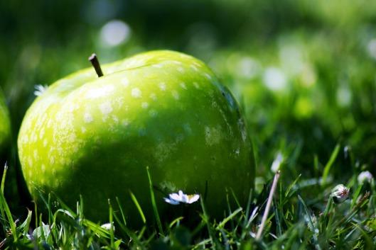 apple-947674_960_720
